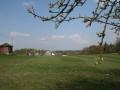Fruehling-Thueringen