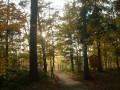 Wanderwege-Thueringen
