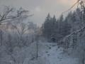 winterlandschaft-thueringen